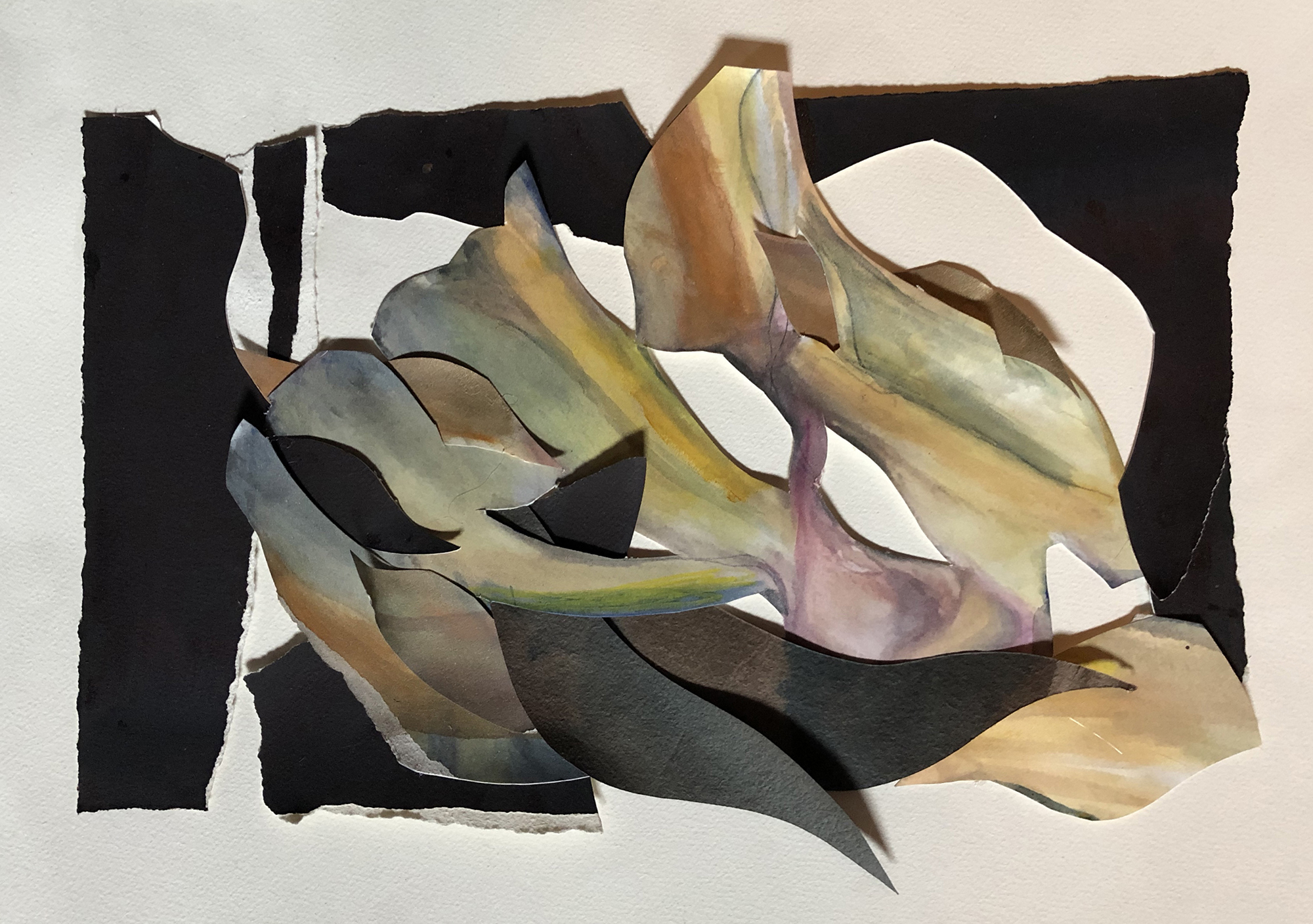 Euphonia by Elizabeth Bryan-Jacobs